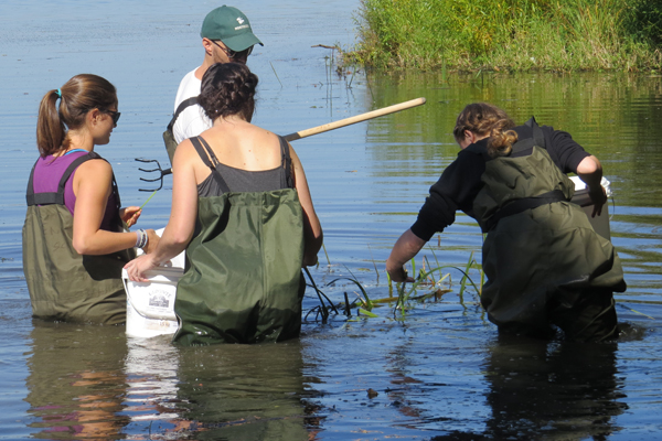 Learn more about: Program Feature: Environmental Science