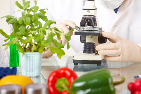Learn more about: Food Science and Nutrition