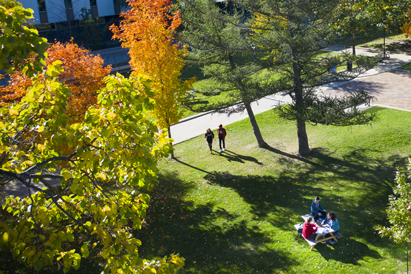 Learn more about: Carleton University: A virtual experience