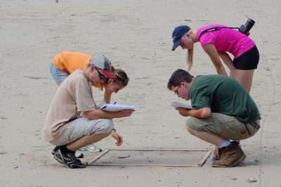 Environmental Science students study sand dunes.